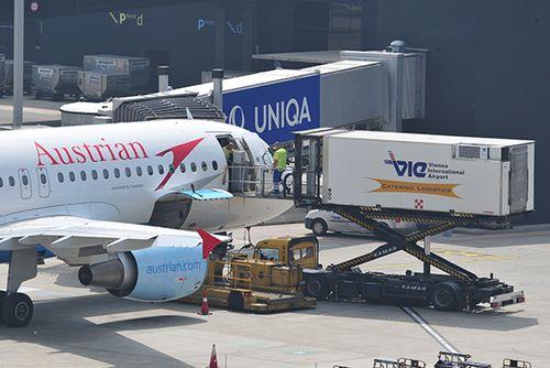 AUA flog 56 Millionen Euro Verlust ein   Austrian Wings